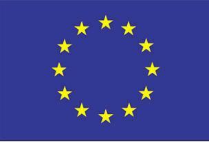 img_eu-flag